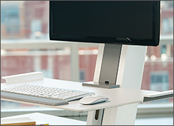 Low Res Image